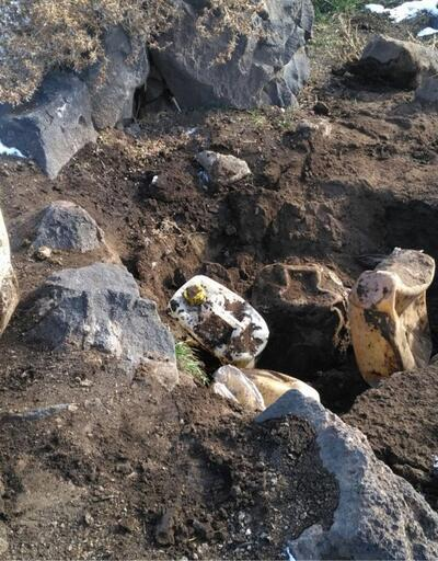 Ağrı Dağı'nda toprağa gömülü şekilde bulundu