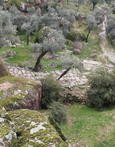 Köylüler 2300 yıllık antik yolu tahrip etti