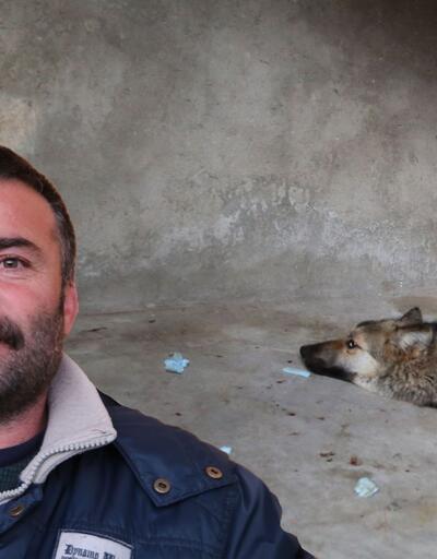 Yer Tunceli: Evinde kurt beslemeye başladı