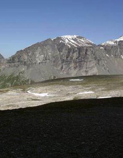 Son dakika... İsviçre Alpleri'nde uçak düştü