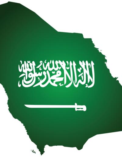 Suudilerden SDG'ye cömert bağış