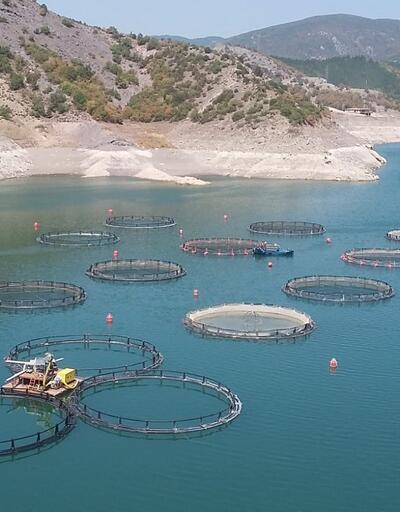 Almus baraj gölünde su seviyesinin düşmesi balıkçıları endişelendiriyor