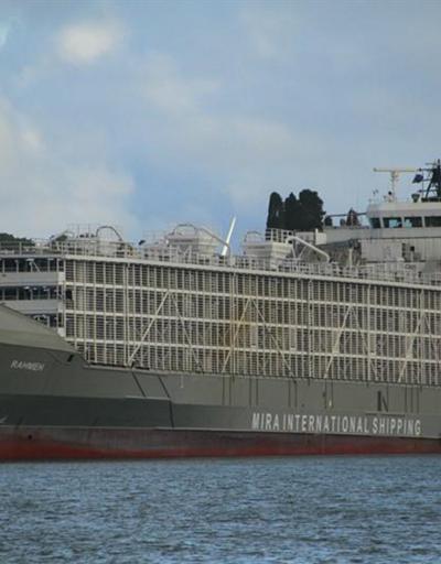 Şarbon iddiasına neden olan gemi İstanbul'dan ayrıldı