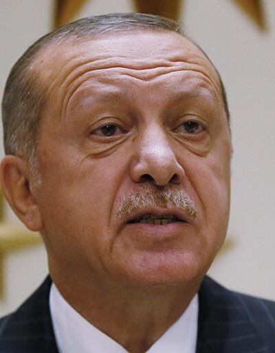 Erdoğan'dan Hayvan Hakları Yasası tepkisi: Yasa hâlâ neyi bekliyor?