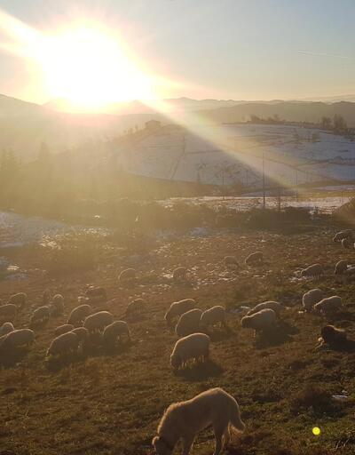 Yaylalarda kartpostallık sonbahar ve kar manzaraları