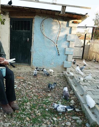 Tekstil işçisinin güvercin sevdası