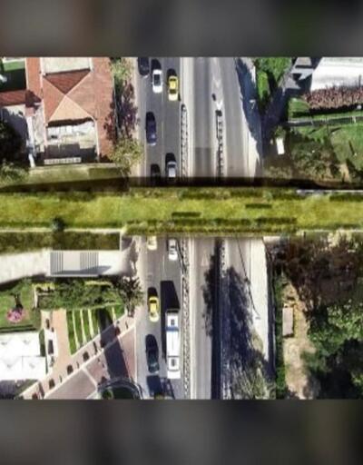 Duble yolların üstüne ekolojik köprüler kurulacak