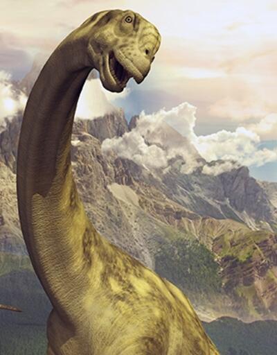 Yeni bir dinozor türüne ait iskeletler bulundu