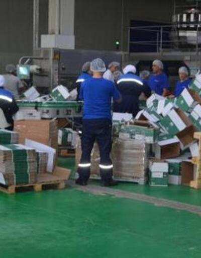 Marmarabirlik üreticiye erken ödeme yapacak