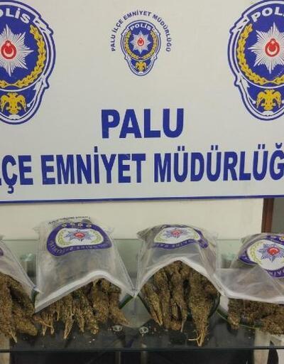 Palu'da 4 kilo esrar ele geçti, 2 kişi tutuklandı