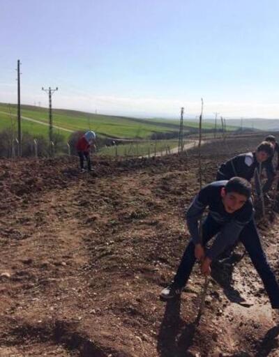 Bismil'de öğrenciler okulun çevresine 300 fidan dikti