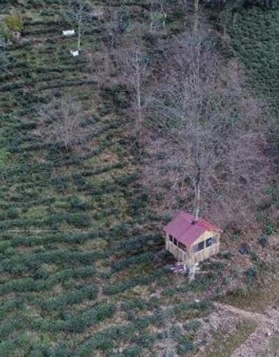 Karadenizlinin 'ağaç kondu' evine ilgi