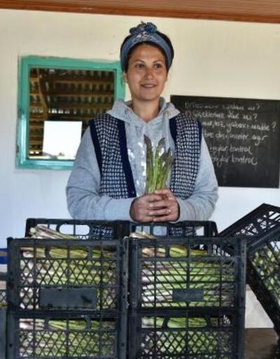 Kuşkonmaz üretiminde 'iyi tarım' sertifikası ile büyük mağazalara girdi