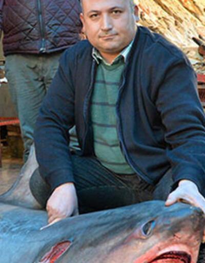 'Sapan' cinsi köpek balığını avlayana 1635 TL ceza