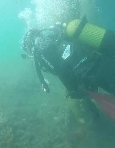 Denizde 'derin' temizlik