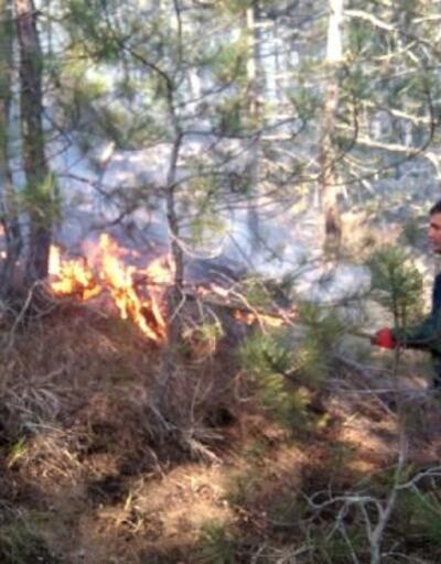 Ormanda çıkan yangında 4 hektar otluk alan kül oldu