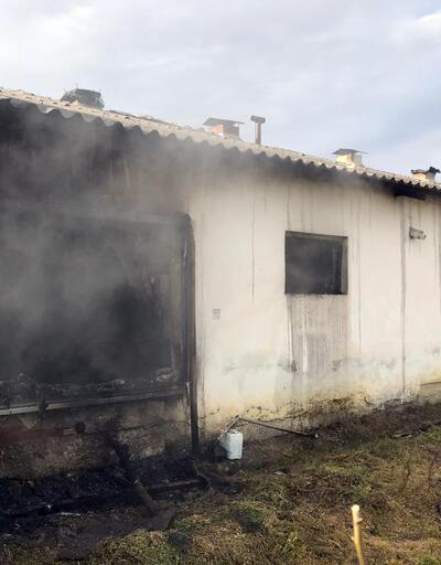 Çiftlikte yangın... Yüzlercesi telef oldu