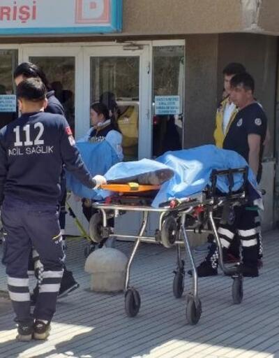 Güvenlik korucusu, korucubaşını öldürüp, intihar etti
