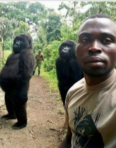 Gorillerle selfie çeken bakıcı o anı anlattı