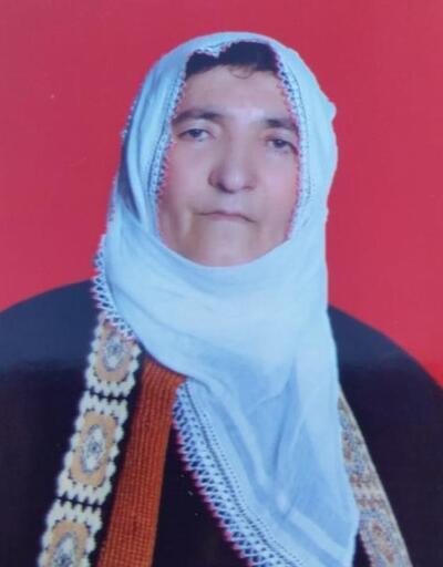 Tunceli'de anne ve oğlunun cinayet şüphelisi tutuklandı