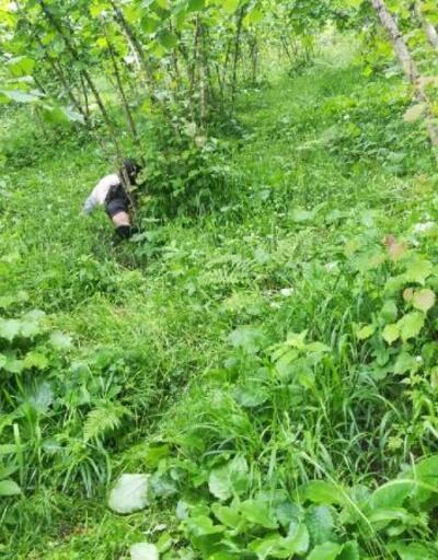 Kayıp yaşlı adam, fındık bahçesinde ölü bulundu