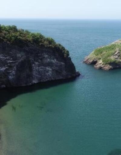 Karadeniz'deki Hoynat Adası, kuşların yaşam alanı