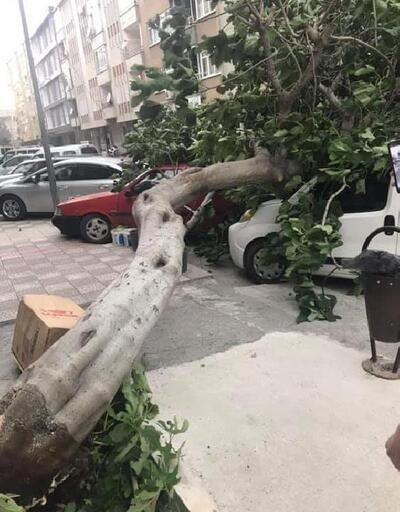 Amasya'da kuvvetli rüzgar çatıları uçurdu