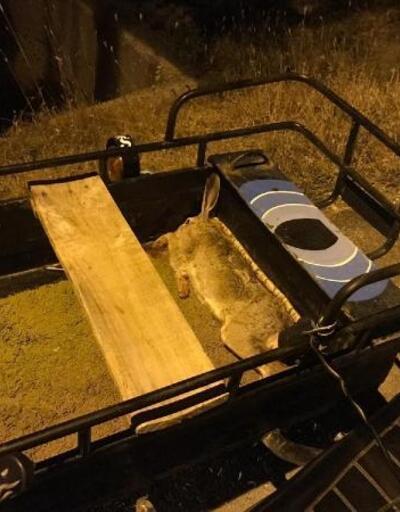 Kaçak tavşan avlayan 2 kişiye 4 bin 348 lira ceza