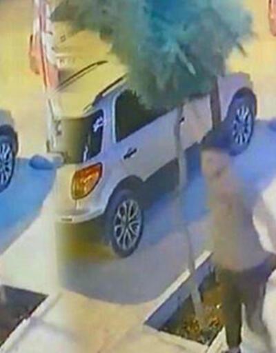 Mardin'de kaldırımdaki ağacı kıran kişiye gözaltı