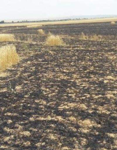 Kulu'da 20 hektarlık ekili arazı yandı