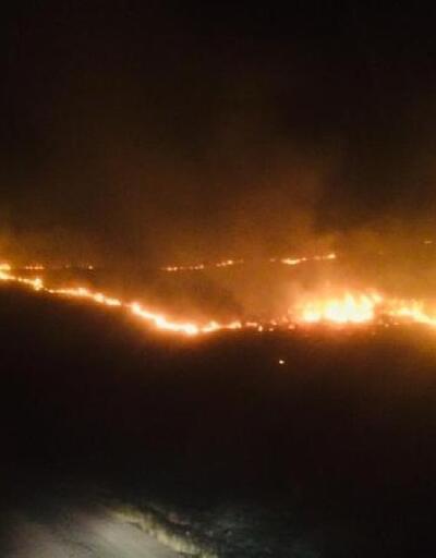 Ergani'de orman yangını 1.7 hektar alanda etkili oldu