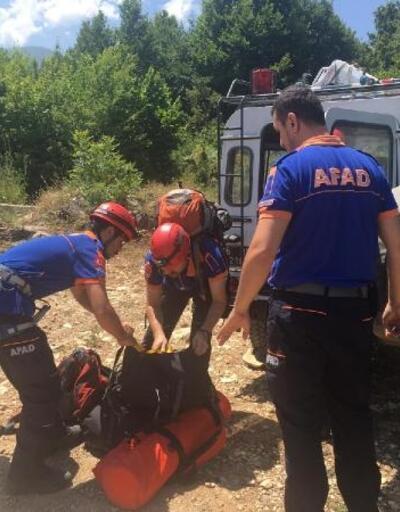 Ihlamur ağacından düşen yaşlı adam yaralandı