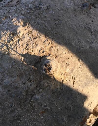 Sakarya'da deniz mayını bulundu