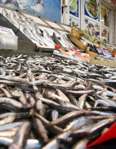 Balık avı yasağı ne zaman kalkacak, sezon hangi tarihte açılacak?
