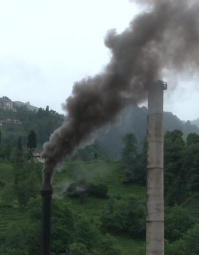 Rize'deki fabrika çevreyi kirletiyor