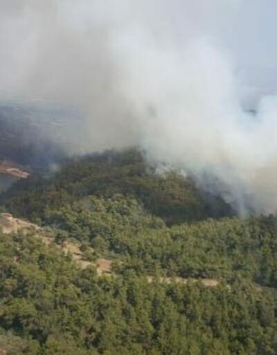Torbalı'da orman yangını
