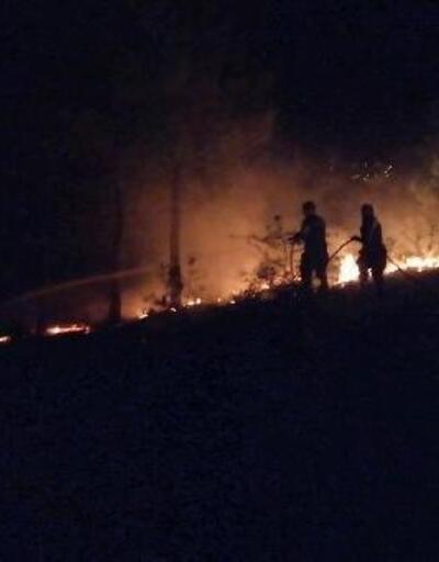 Amasya'da havai fişekten orman yangını çıktı