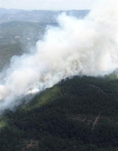 Orman yangınında sabotaj şüphesi