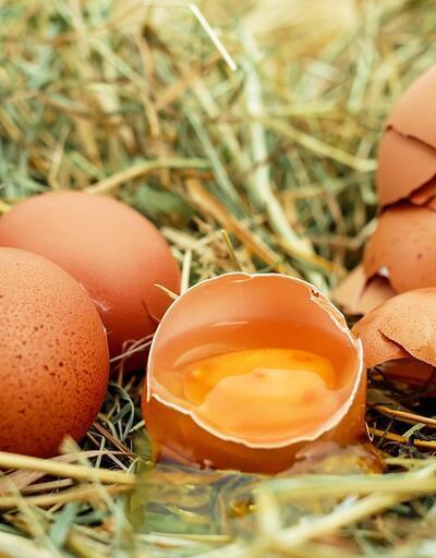 Sağlıklı diye tüketilen yumurtadaki büyük tehlike!