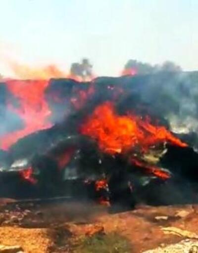 Çiftlikte korkutan yangın