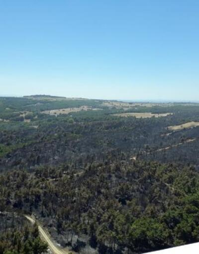 Gelibolu Yarımadası'nda yanan alan havadan görüntülendi