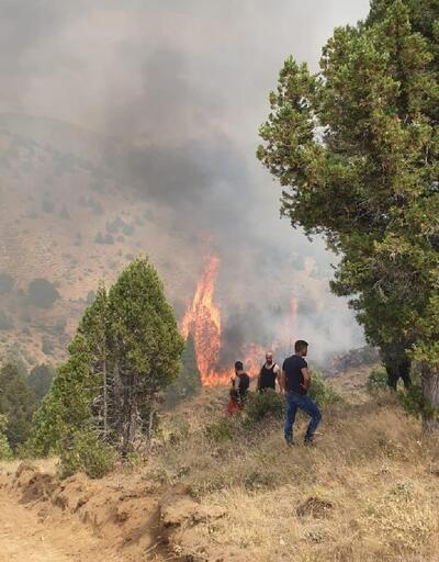 Kahramanmaraş'ta 5 hektar ormanlık alan yandı