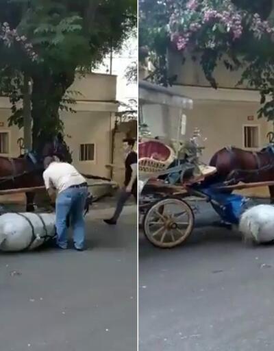Faytona sürülen atın içler acısı hali