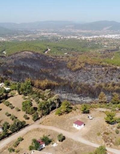 Bodrum'da yangın çıkan bölge drone ile görüntülendi