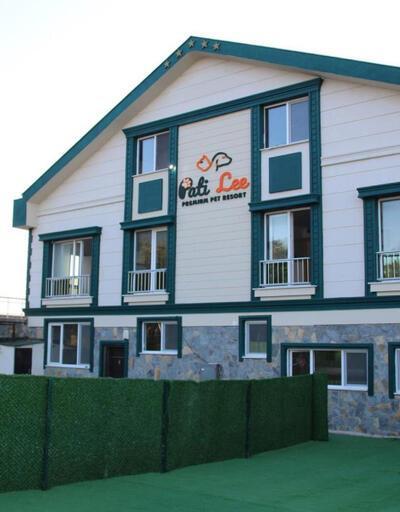 Evcil hayvan tesisi 'PatiLee Premium Pet Resort' açılıyor!