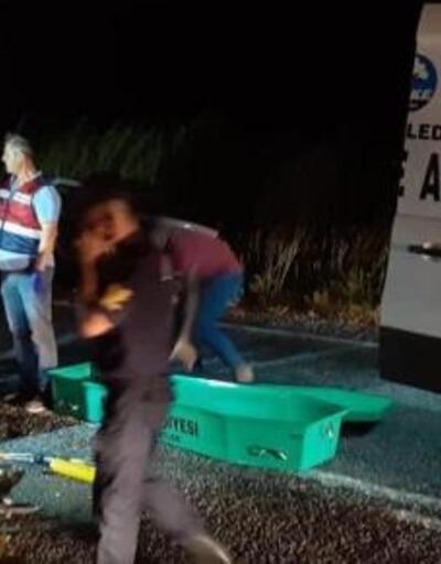 Aydın'da iki otomobil çarpıştı: 1 ölü, 3 yaralı