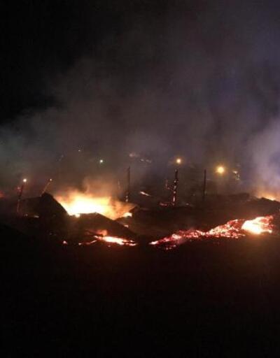 Ahır yangınında 120 küçükbaş hayvan öldü
