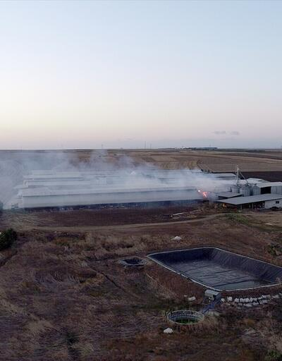 Yüzlerce büyükbaşın olduğu çiftlikte yangın