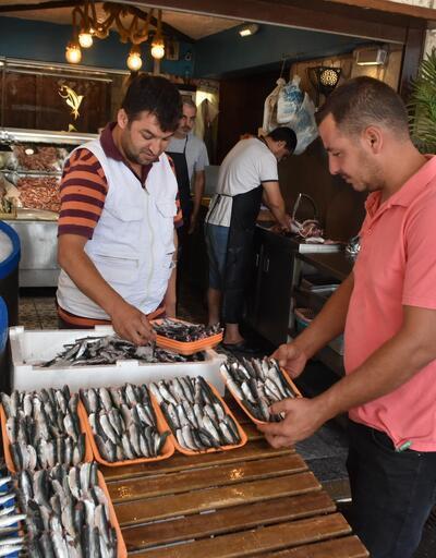 Balık sezonu açıldı fiyatlar bir gecede düştü