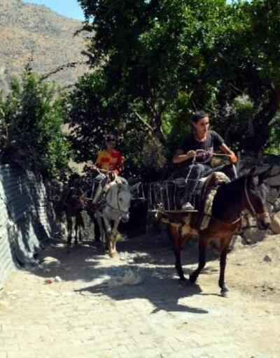 Köy yollarına döşenen parke taşları için katırlar kiralandı